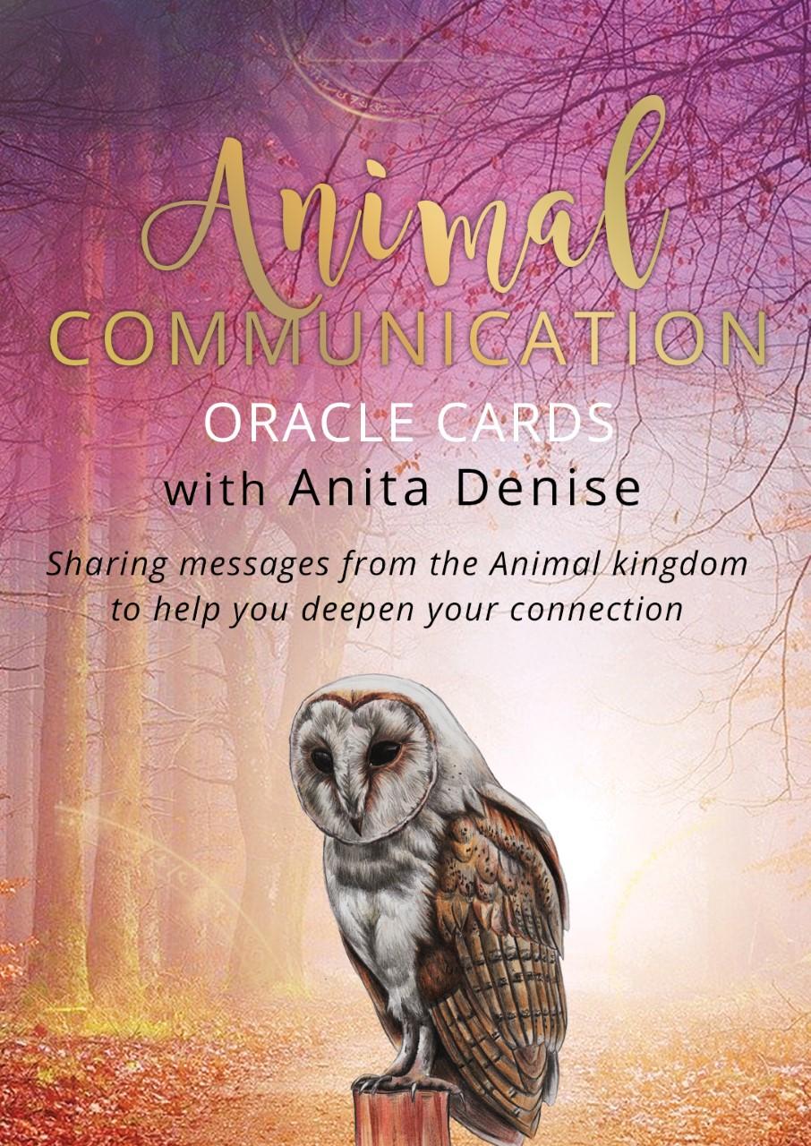 animal communication cards