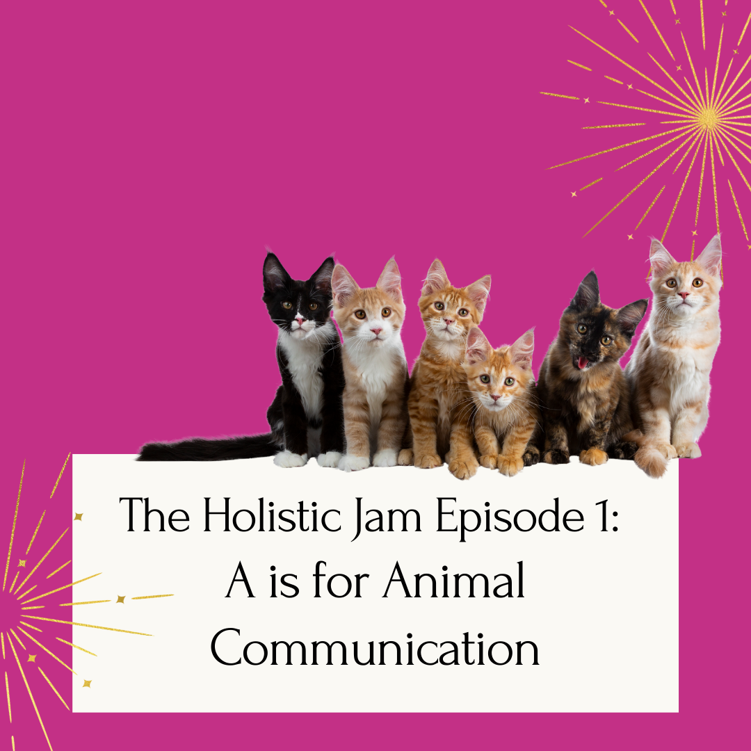 Cats sitting on podcast title